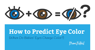 When Do Babies Eyes Change Color Will They Stay Blue
