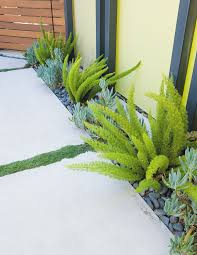 Creative Landscape Design Creative Landscape Design For A Renovated Eichler In