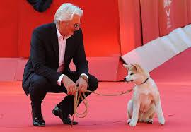 Hachiko la vera storia di un cane fedele: film, razza ...