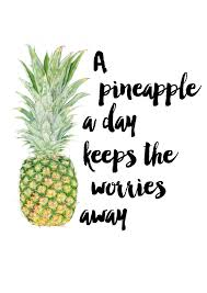 A Pineapple A Day Makes The Summer Stay I N S P I R A T I O N