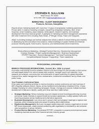 Marketing Resume Templates New Example Of A Good Resume Unique Executive Resume Examples Good