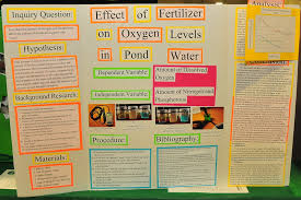 poster for school project palooza faqs outreach foundation