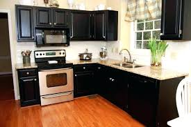 What Color To Paint Kitchen With Dark Cabinets Cool Decorating Ideas