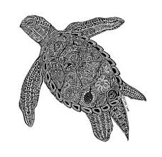 Small Picture Green Sea Turtle Drawings Fine Art America