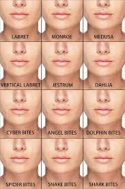 All Face Piercings Chart Lip Piercings Guide In 2019 Lip Piercing Piercings Face