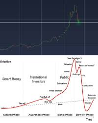 Bitcoin Chart 2017 Vs Generic Chart Of A Financial Bubble