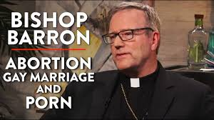 Abortion Gay Marriage and Porn Bishop Barron Interview Pt. 2.