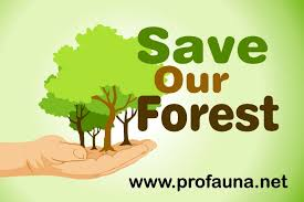 how we can protect our environment essay kie ho essay how we can protect our environment essay