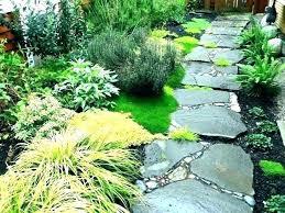 walkway ideas for backyard backyard diy front yard walkway ideas