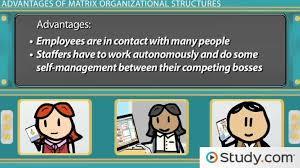 Benefits Of Organizational Chart Matrix Organizational Structure Advantages Disadvantages Examples