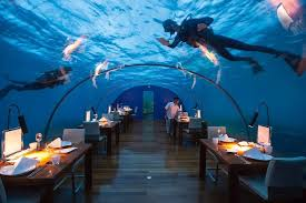 underwater restaurant disney world. Underwater Restaurant Disney World T