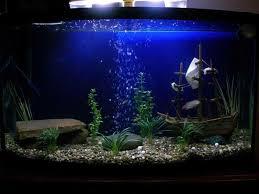 Small Fish Bowl Decorations aquarium decorations and ornaments TrellisChicago 12
