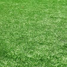 fake grass texture. Fake Grass Texture