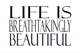 Breathtakingly Beautiful Quotes Best of Postcard Of The Week Life Is Breathtakingly Beautiful The Well