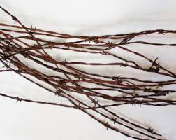 barbed wire decor etsy