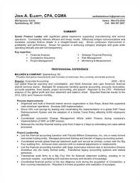 Effective Resume Template Resume Examples Big 4 Accounting Accounting Examples Resume
