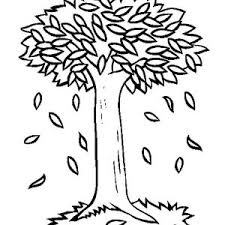 Small Picture Autumn Fall Tree Coloring Page Autumn Tree Coloring Pages Coloring