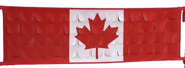 ProNet Tailgate Net: CANADIAN FLAG MINI (PN013) - Covercraft Outlet