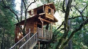 Simple Treehouse Designs Simple Diy Treehouse Designs genderpacorg