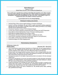 Business Analyst Resume Unique Cool Create Your Astonishing Business