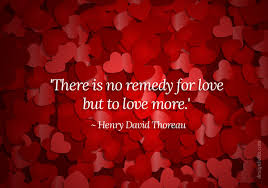 Valentines Day Love Quotes Delectable Download Love Quotes For Valentines Day Ryancowan Quotes