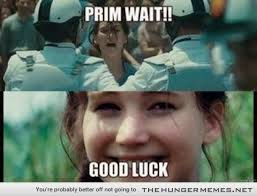 20 Jokes & Memes That Only Hunger Games Fans Will Understand ... via Relatably.com