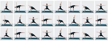 Online Yoga Videos Iyengar Yoga Classes Yoga Selection