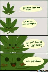 Leaf Memes. Best Collection of Funny Leaf Pictures via Relatably.com