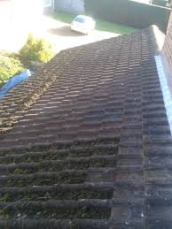 roof cleaning and moss removal photo