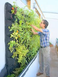 5 vertical vegetable garden ideas for beginners using felt pockets is a great way to