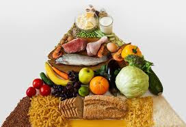 What Is Food Pyramid Chart Food Pyramid For Kids Importance And Components