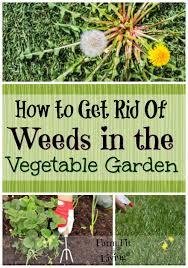 how to get rid of weeds in garden. how to get rid of weeds in vegetable gardens garden l