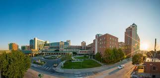 One Chart Nebraska Medicine U S News Ranks Nebraska Medical Center Number One In