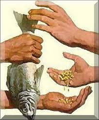 Resultado de imagen para Reducir la pobreza creando riqueza