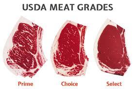 A Lesson In Steak Cuts Foodie