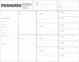 free family pedigree maker free family pedigree maker blank four generation tree format