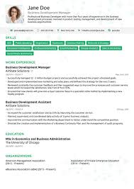 Resum 24 Professional Rsum Templates As They Should Be 24 Resum Template 17