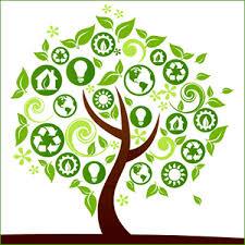 green environment essay