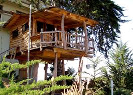 Cool Treehouses For Kids Captivating Kids Tree House Design Ideas With Light Wooden