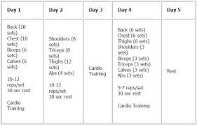 5 Day Workout Chart Workout Chart For Men Jasonkellyphoto Co