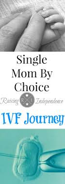 Best 20 Single And Pregnant ideas on Pinterest Food for.