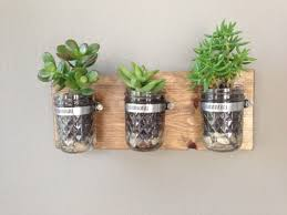 40 Creative Decoration Ideas With Plants - Succulent In The Glass Eye. Home  & Garden Ideas 2017