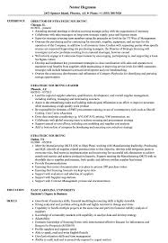 Strategic Sourcing Resume Samples Velvet Jobs