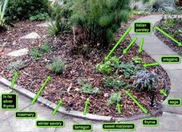 Small Picture 86 best Herb garden SMALL images on Pinterest Herbs garden Herb