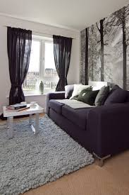 Silver And White Living Room White And Grey Living Room Ideas Nomadiceuphoriacom