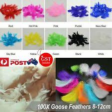 Goose <b>Red</b> Craft Feathers for sale | eBay