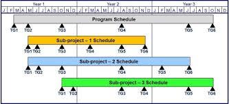 Project Milestones Chart Milestone Chart Project Management Goal Goodwinmetals Co Key