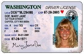 Clark Restoration Driver Washington County Program License