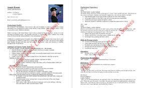 Sample Nanny Resume Nanny Resumes Resume Badak 85