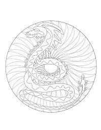 A Imprimer Mandala Dragon 2 Coloriage Mandalas Coloriages Pour